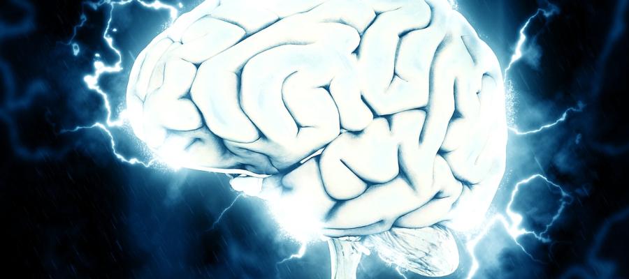 Por que e como  treinar a mente?