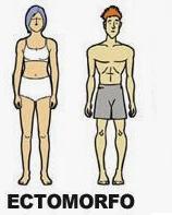 Tipos de corpo_Endomorfo, Mesomorfo e Ectomorfo_ectomorfo_CamelBak Training Club