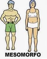 Tipos de corpo_Endomorfo, Mesomorfo e Ectomorfo_mesomorfo_CamelBak Training Club